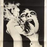 Bug australian daybill poster 1975