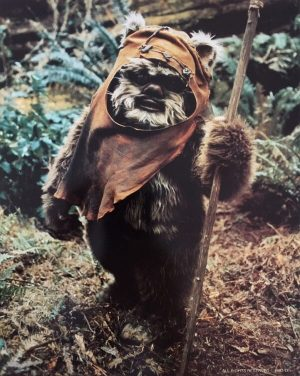 Return of the Jedi publicity photo - Ewok Wicket