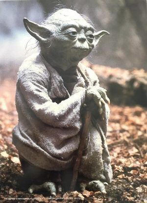 The Empire Strikes Back Publicity Photo - Yoda (1)