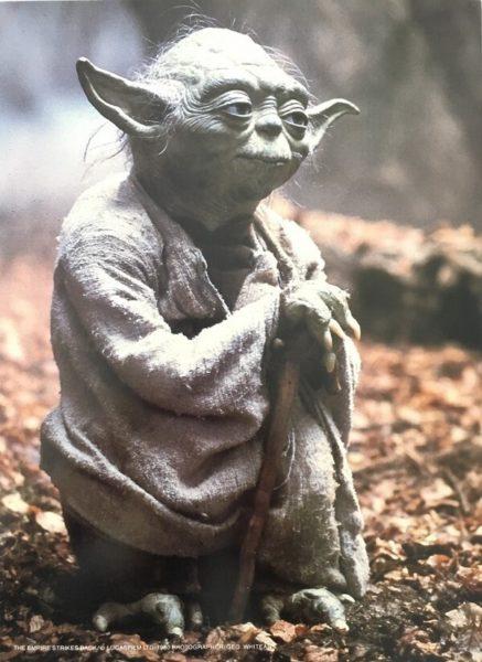 The Empire Strikes Back Publicity Photo - Yoda (1)
