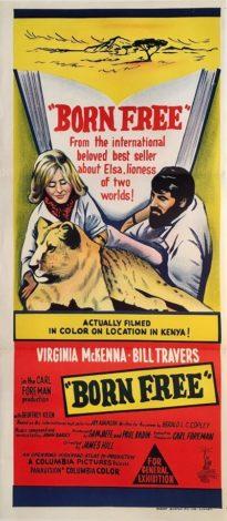 born free australian daybill poster 1966