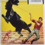 smoky australian daybill poster 1966