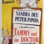 tammy and the doctor australian daybill poster 1963