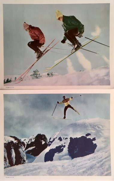 ski on the wild side lobby cards (1)