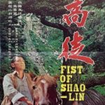 fists of shaolin 1973 Hong Kong Movie Poster
