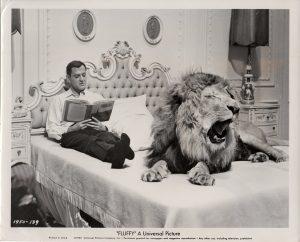 fluffy publicity still 1965