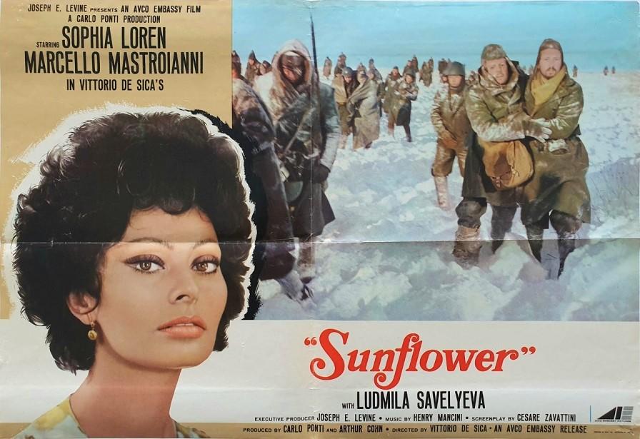 sunflower italian poster with sofia loren 1970 photobusta