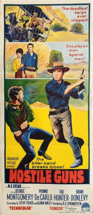 Hostile guns daybill movie poster western 1967