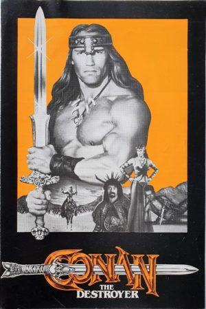 Conan The Destroyer UK Synopsis