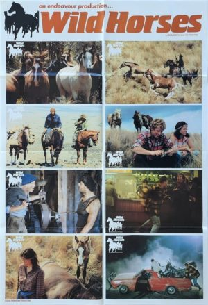 Wild Horses New Zealand Lobby Card One Sheet poster