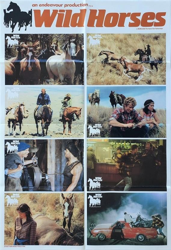 Wild Horses New Zealand Lobby Card One Sheet poster