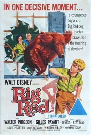 Big Red Walt Disney Australian One Sheet Movie Poster (8)