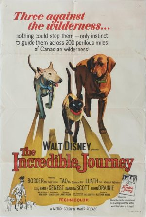 The Incredible Journey Walt Disney Australian One Sheet movie poster (65)